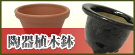 陶器植木鉢